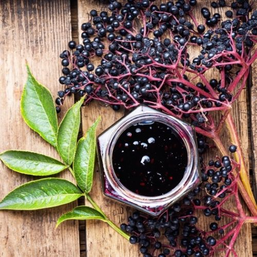 Fruits that start with E Elderberry 2