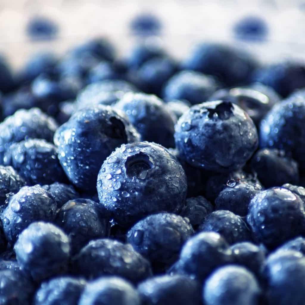 Healthy Snacks - Blueberries