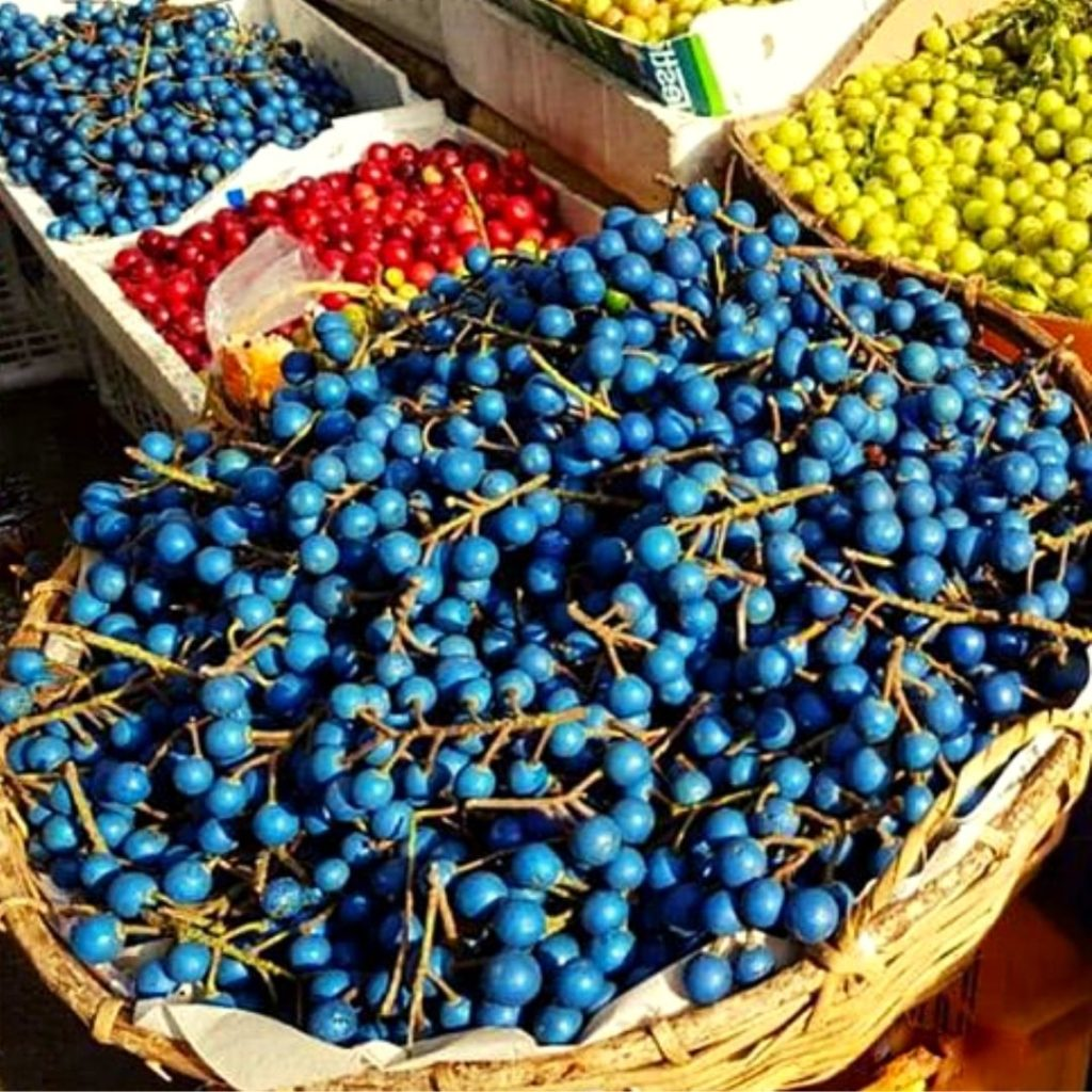 Frutas azules - aceitunas azules