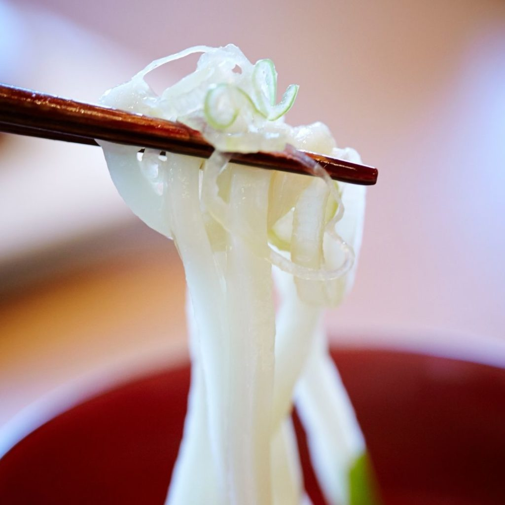 Foods that start with U - Udon noodles