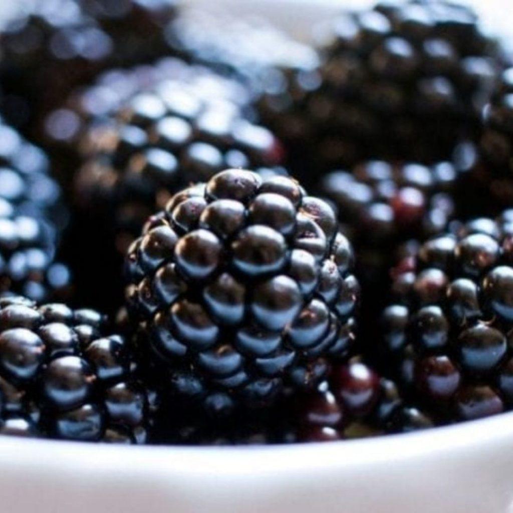 Purple Foods - Blackberries