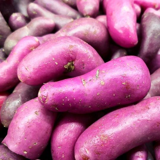 Purple Foods - Ulluco