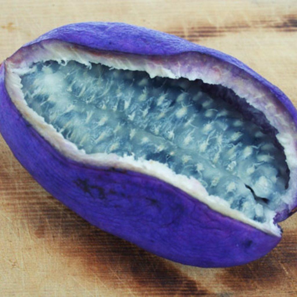 Frutas Moradas - Fruta Morada Akebi